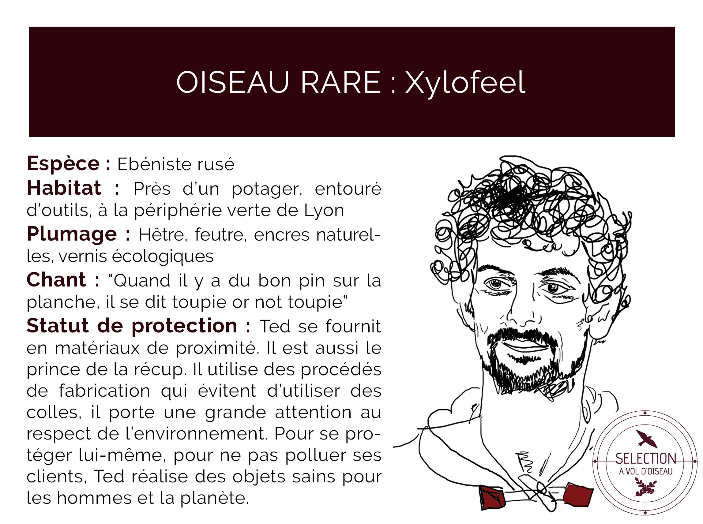 page artisan xylofeel AVO bois