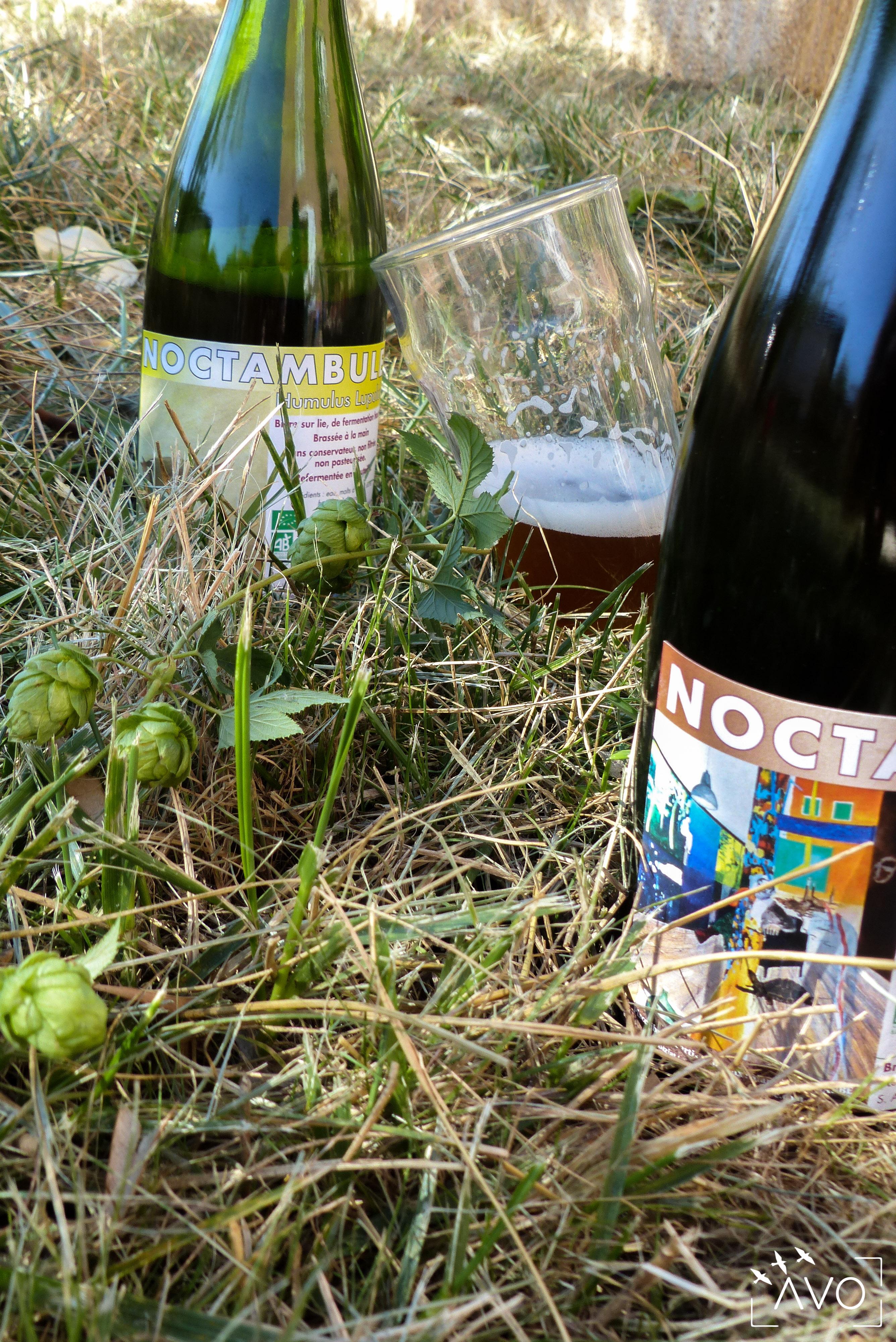 avo-ecologie-biere-bio-lyon-atelier-brasserie-herbe