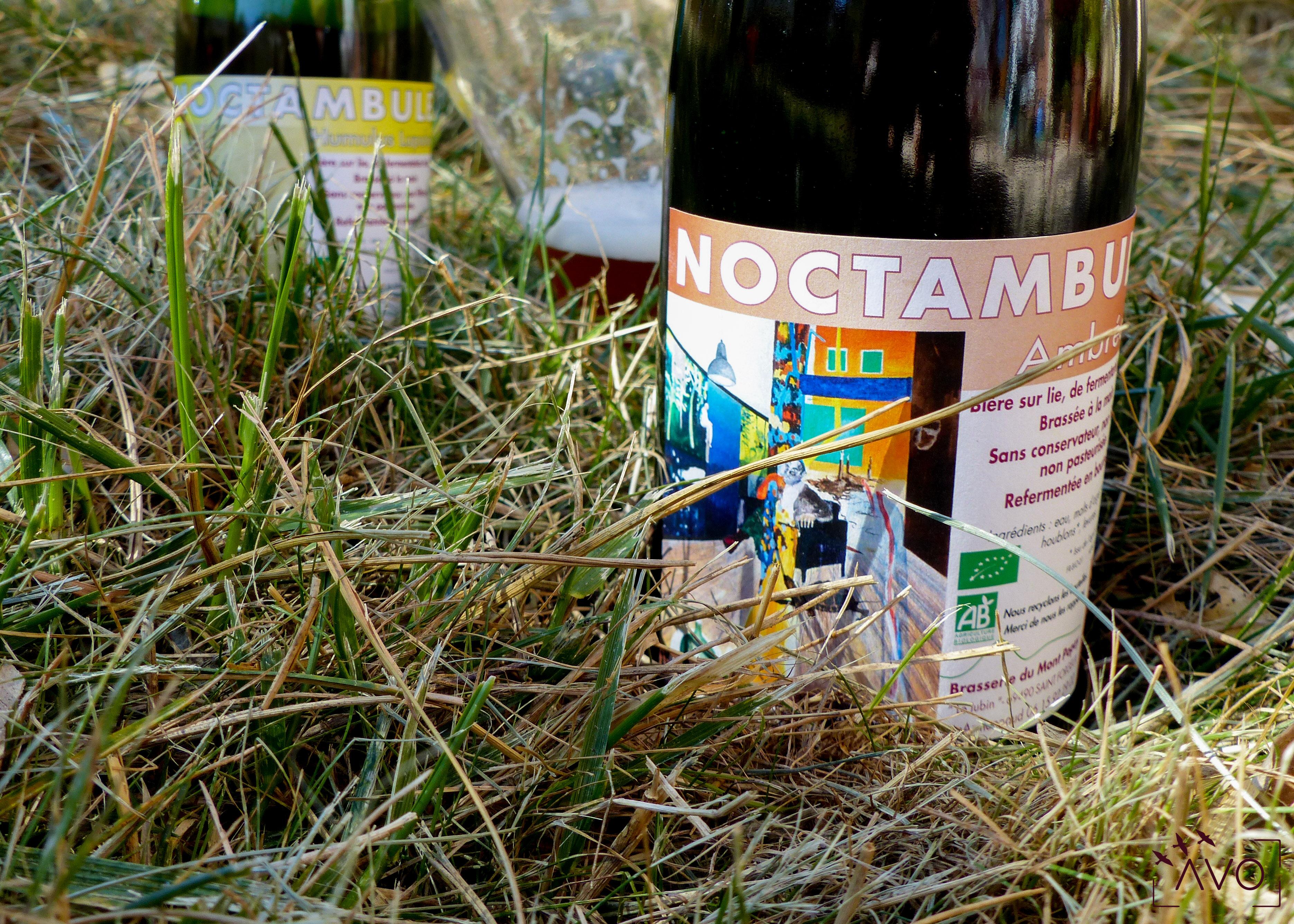 avo-ecologie-biere-bio-lyon-noctanbulle-stephan