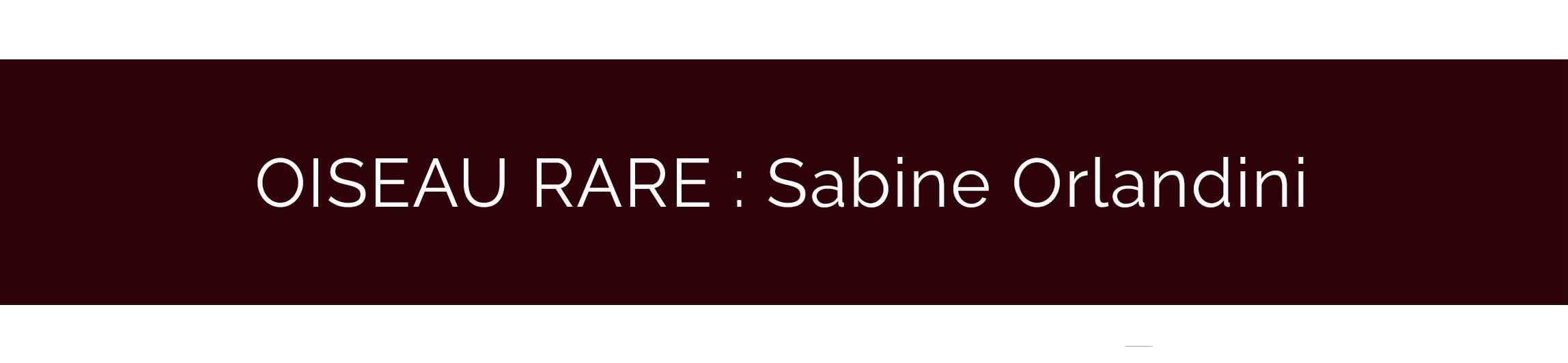 bandeau-artisan-sabien-orlandini
